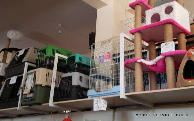 mypet-petshop-didim-kedi-kopek-tasima-kafesleri